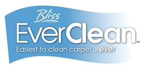 EverClean Type Logo Final